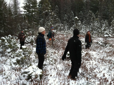 Participants explore the bog looking for pod grass.